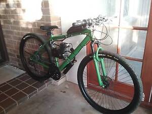 80cc MOTORISED BIKE FOR SALE Greenwith Tea Tree Gully Area Preview