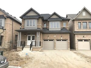 Brand New House For Lease