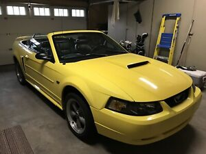 2002 Mustang GT - reduced to sell