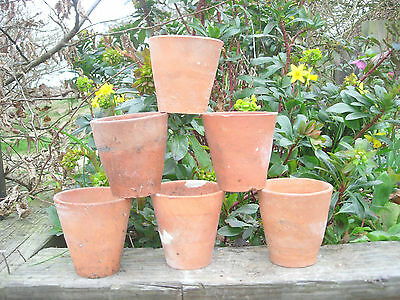 6 Old Vintage Hand Thrown Terracotta Plant Pots 3.25