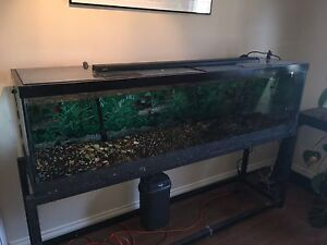 6ft Fish Tank with Filter