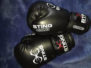 STING boxing gloves Chippendale Inner Sydney Preview