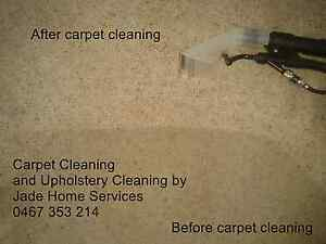 Carpet cleaning and stain removal. Jade home services Petrie Pine Rivers Area Preview
