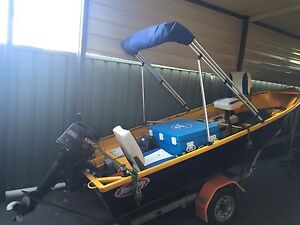 12 Foot Tinny with 9.9Hp motor St Marys Penrith Area Preview