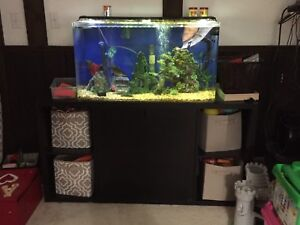 Aquarium 55 gallon