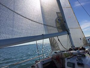 Beneteau First Class 7.0 - Refurbished trailer Sandgate Brisbane North East Preview