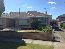 Room For Rent In Big 3 Bedroom House, Thornbury, Available Now!! Thornbury Darebin Area Preview