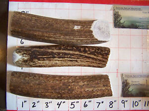 1 LB Antler Dog Chews Deer Treats SPLIT ANTLER CHEWS