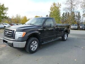 Ford F-150 Cabine ord 4RM 145 po XL