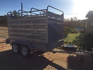Horsefloat /stock trailer Gunning Upper Lachlan Preview