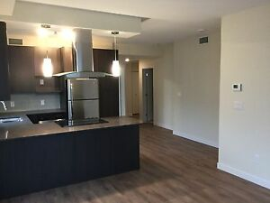 1st month Rent FREE - Studio on the Hill  9907-91 ave