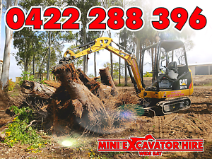 Mini Excavator Hire Wide Bay Tree Removal Stump Removal Maryborough Fraser Coast Preview