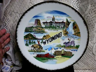 Vintage SOUVENIR WYOMING State collector plate 10 1/2  '' plate..W.N.CERAMICS