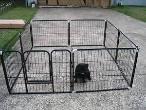 BRAND NEW Pet Dog Exercise Encl Fence Play Pen Run-61cmx8 PANEL Kingston Logan Area Preview