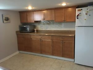 Large Fully Furnished and Renovated 1 Bedroom Apt