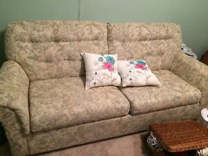 Pull out couch FREE