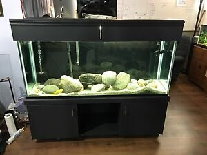 Full setup 112 Gallon Aquarium in excellent condition