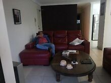 Leather Couch + Wooden table for Sale! $600 Negotiable Centennial Park Eastern Suburbs Preview
