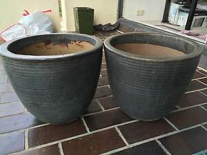 3 x Garden pots Darling Point Eastern Suburbs Preview