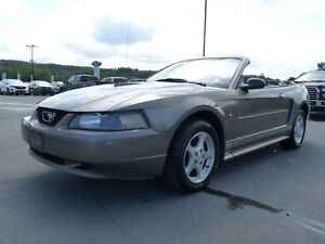 Ford Mustang Cabriolet 2 portes