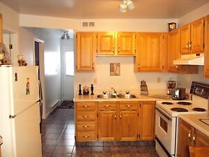 2 Bedroom Apt close to hospital and UofM