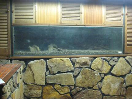 LARGE SNAKE OR LIZARD TANK -645 LITRE CAPACITY Heathcote Sutherland Area Preview