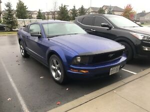 Beautiful condition 2005 mustang *price drop