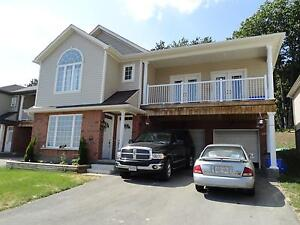 Stunning 3 Bedroom Lower Unit - $1,150.00 - Available Sept 17th!