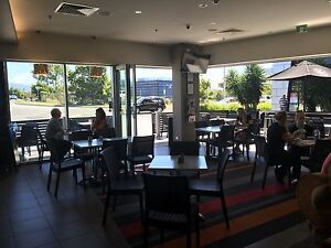 Busy Cafe in Robina Robina Gold Coast South Preview