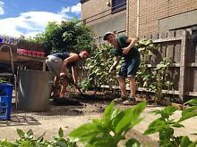 FREE ACCOMMODATION FOR GARDENING & CLEANING WORK Brunswick Moreland Area Preview