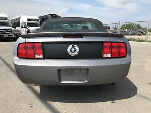 Mustang Convertible 5spd LEATHER 148K VERY CLEAN WINTER WHEELS