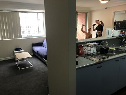 Looking for friends and neat roommates