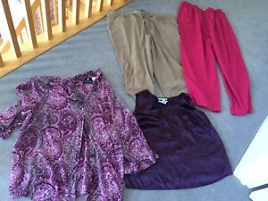 18, 20 and 22 plus sized Clothing Lot for $20
