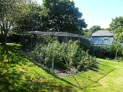 Fruit Cage Chicken Pen Garden Walk In Anti Bird 3.5 x 4.0Gardener's Gift Idea