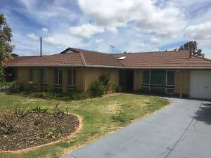 Lovely 4x2 PET FRIENDLY Home Dianella Stirling Area Preview