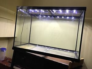 Fish Tank, filter, lights and accessories 36x24x18