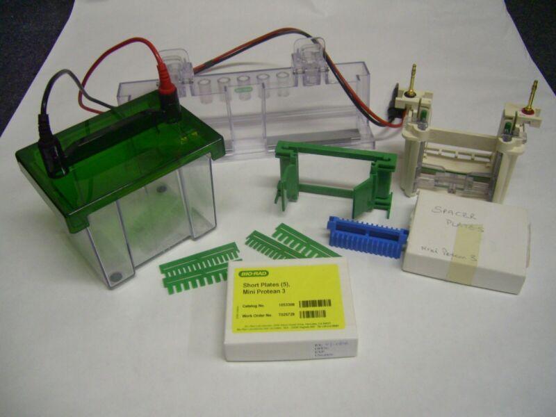 biorad mini protean III complete system