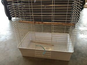 Bird Cage $20