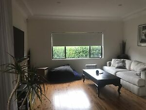 Large bedroom available for 4-6 weeks in Freshwater Freshwater Manly Area Preview