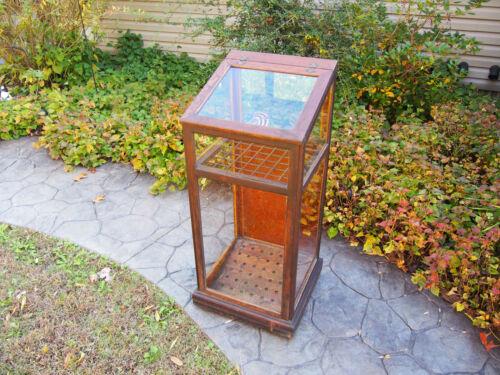 Elegant Antique Golf Club,Cane,Umbrella Display Case Wood & Glass Cabinet