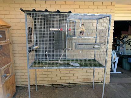 Suspended patio aviary