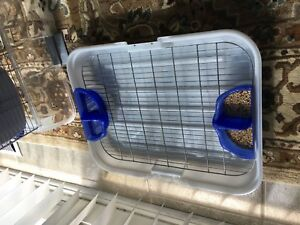 Very clean Cage with bird