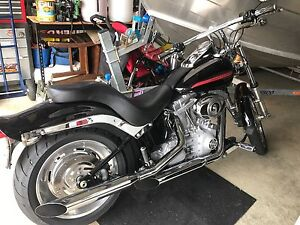 HARLEY SOFTTAIL Gladstone Gladstone City Preview