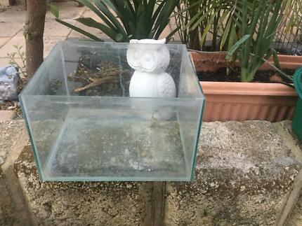 Fish tank/frog/crazy crab with pump in very good condition