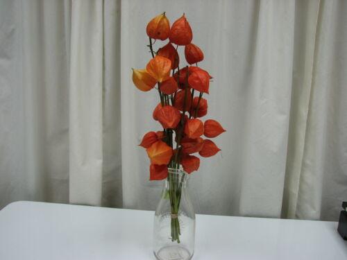 CHINESE LANTERN FLOWER BOUQUET, Fresh Dried Orange Lanterns, Decorating, Crafts