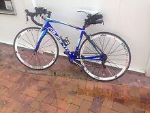 Avanti Giro 4 53.5cm Graceville Brisbane South West Preview