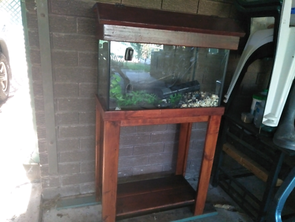 Aquatic fish tank and stand