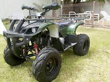 250cc Automatic Quad Bikes----Brand New---Fully Assembled Cranebrook Penrith Area Preview