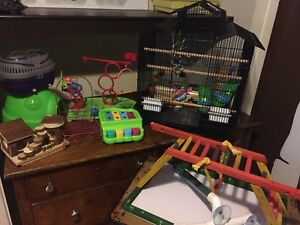 BIRD CAGE, TOYS and ACCESSORIES