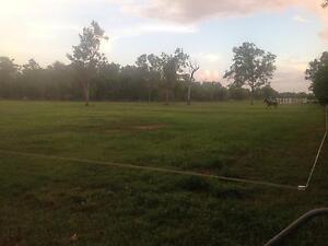 Horse Paddocks $50 week Humpty Doo Litchfield Area Preview